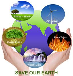 Importance Of Saving Our Environment Essay Sample